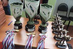 Лично - командные соревнования по дзюдо 2016